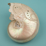 image of Decorated Nautilus Shell