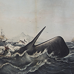 "image of ""Sperm Whaling No. 2 - The Capture"""