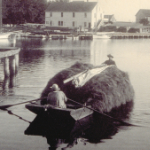 image of Bringing a Load of Marsh Hay Up the Mystic River, 1899