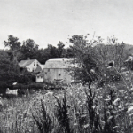 image of House and Barn, Old Mystic, CT, circa 1900